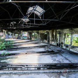 Rotonde Jungle abandonné urbex