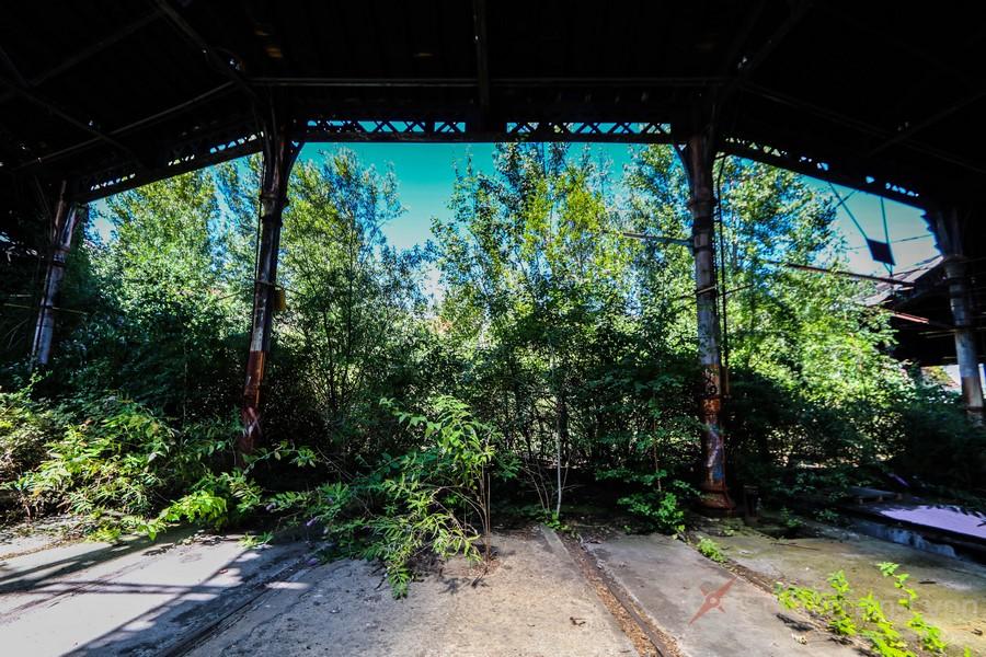 Rotonde Jungle abandonné urbex
