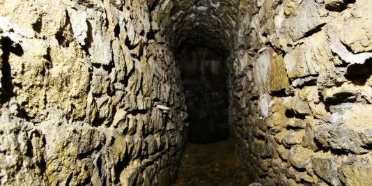 galerie souris souterrain lyon