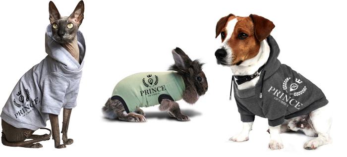 vetements animaux urbex
